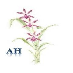 Sturminster Newton-Ann Herring - Accountancy and Tax Services 1