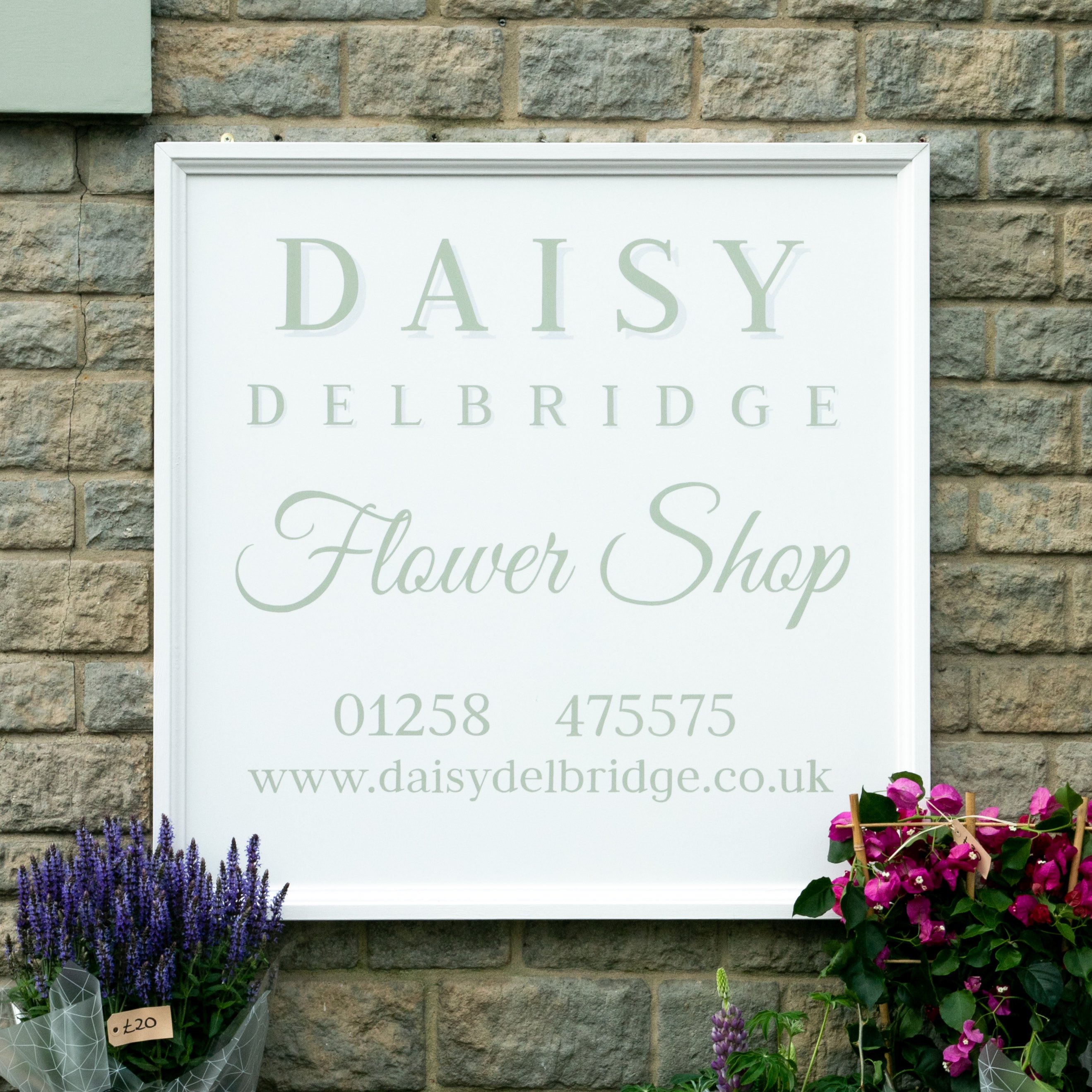 Sturminster Newton-Daisy Delbridge 2