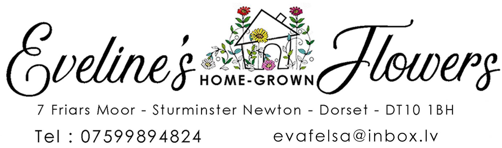 Sturminster Newton-Eveline's Home Grown Flowers 8